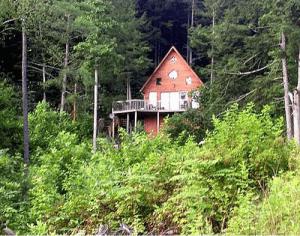 Cabin Rentals in Kentucky